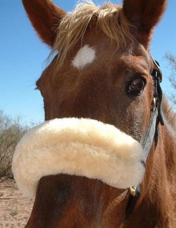 Noseband 12 Long Horse Sheepskin Wool Halter Fuzzy Bridle