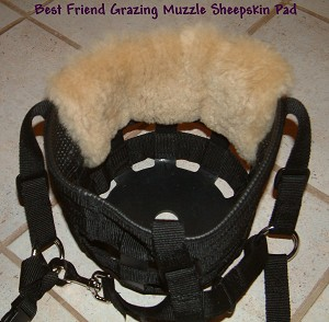 Best Friend Brand Have-A-Heart Grazing Muzzle under CHIN LINER PAD Australian Merino Sheepskin Designed by JMS